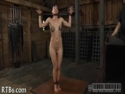 Porno les fammearabxx